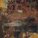 [清水町]店内が森になり、精霊たちがやってくる…TSUBORA-YA個展 「Spirit nuts」