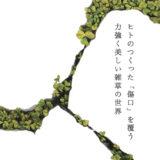 [沼津]生命力を描くKima Ridgeway「草展」